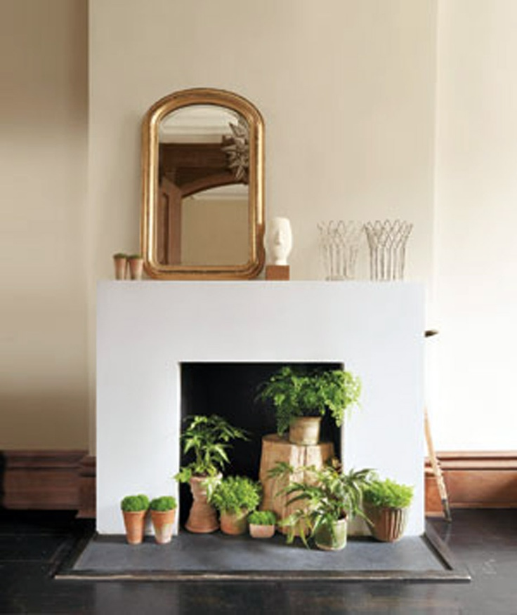 plant fireplace