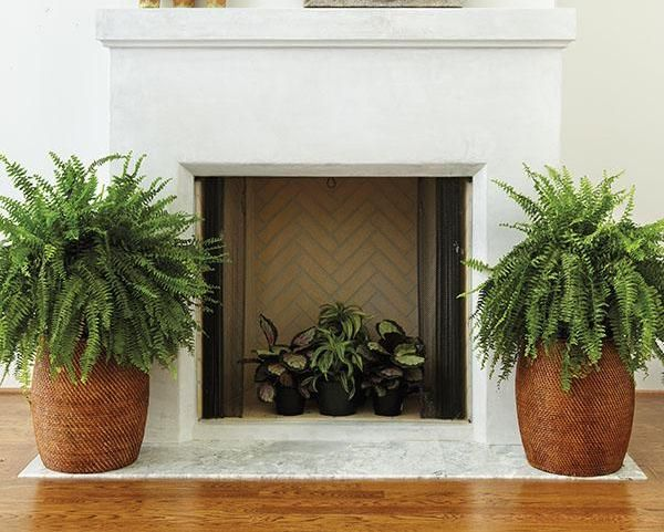 6 Decor Ideas for a nonworking fireplace